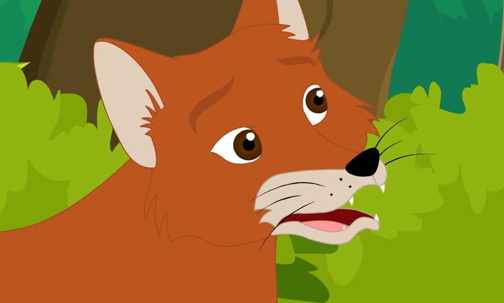 suprised fox